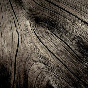 le morta, bog oak, bog wood, bogwood