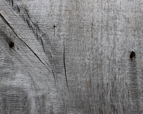 Silver barn wood siding for How to treat barn wood for bugs